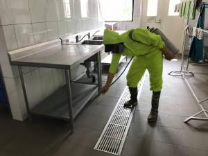 Dịch vụ diệt kiến 3 khoang chất lượng và an toàn