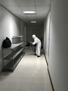 Lựa chọn dịch vụ phun thuốc diệt muỗi tại Hà Nội