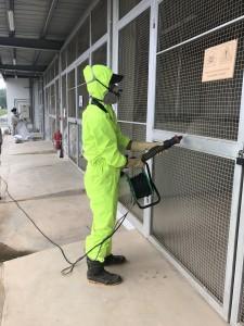 Dịch vụ phun thuốc diệt kiến tại Hà Nội