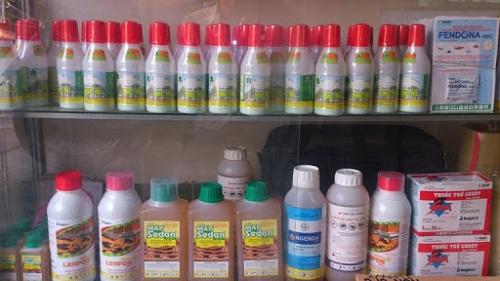 Thuốc diệt kiến có độc không